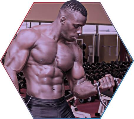 Por que começar a musculação?
