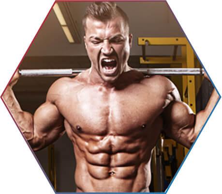 Creatina: ação no ganho muscular