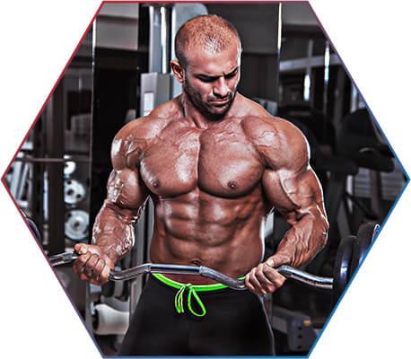 Leucina e o ganho de massa muscular