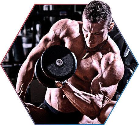 Aumento de força muscular