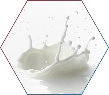 Proteína do leite e o custo/benefício