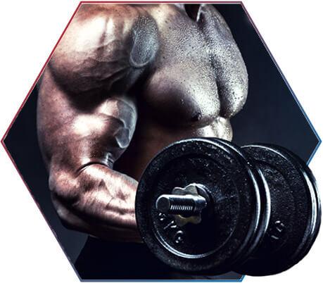 Batata doce: nutrientes importantes para os atletas