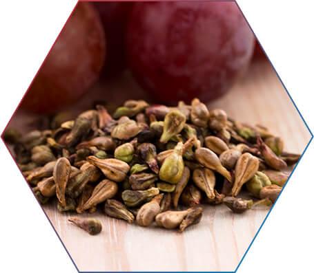 O que é óleo de semente de uva?