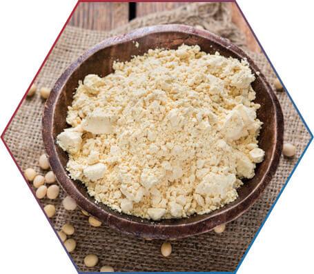 De que forma a proteína da soja é obtida?