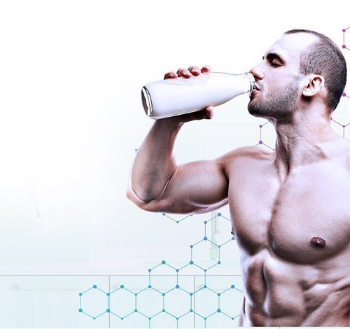 O que é Milk Protein?